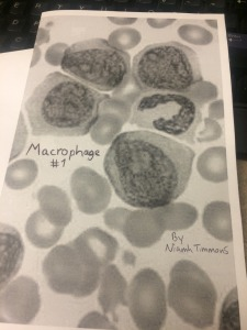 Macrophage 1 cover